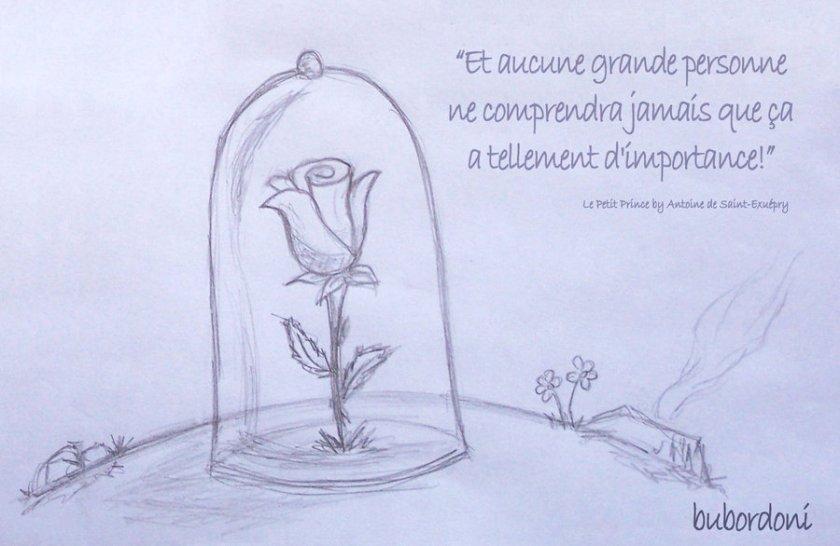 Le_Petit_Prince_by_bubordoni